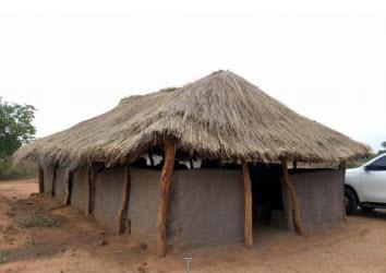 Najina Zambija